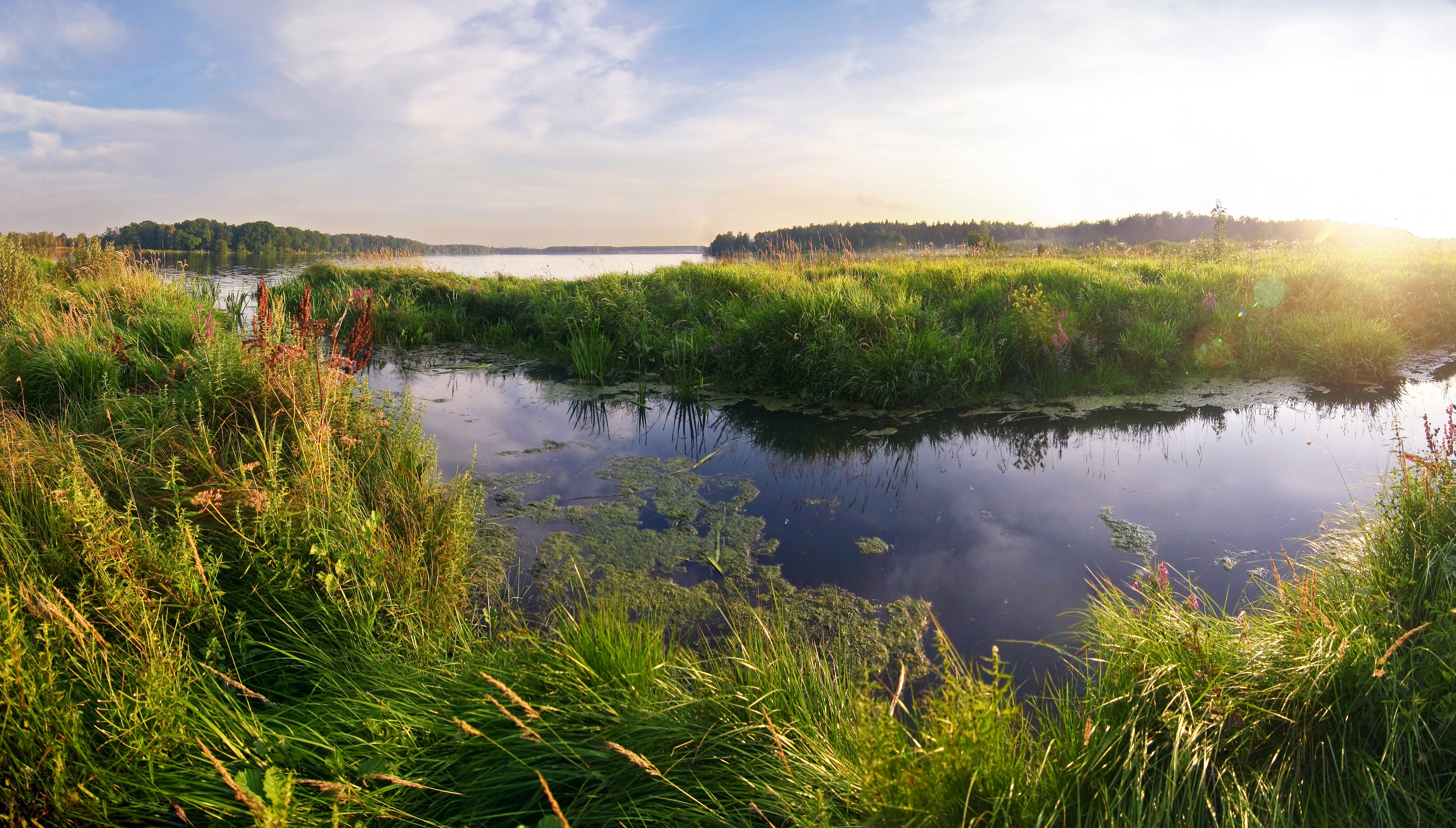 Why Wetlands Can (And Should) Boost Your NDC