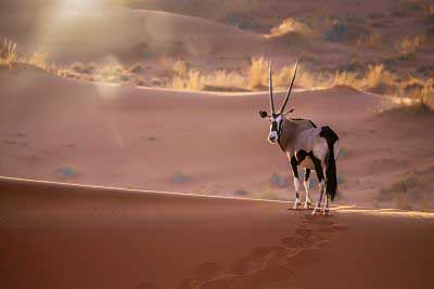 Namibia climate change plan for sustainable development